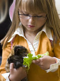 Girl with guinea pig. A cute little girl holding her guinea pig in her hand, feeding it with some lettuce Royalty Free Stock Image