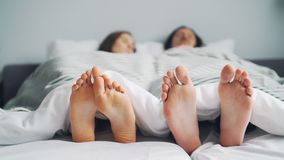 Girl and guy couple napping in bed together lying under blanket barefoot. Girl and guy couple are napping in bed together lying under white blanket barefoot stock video