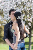 Girl and guy kissing among of blossoming almond branches Stock Images