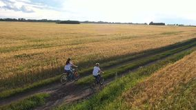 Girl with a guy riding a bike along a wheat field.Travel with family on bikes. Beautiful landscape from a height, the stock video footage