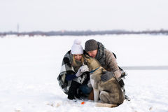 The girl, the guy and Siberian huskies Stock Images