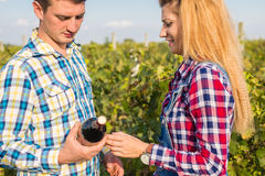 The girl and guy in the vineyard. The girl and the guy in the vineyard drink red wine Royalty Free Stock Image