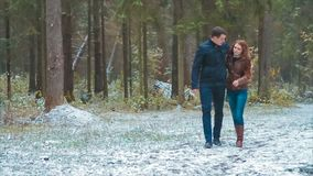 Girl And Guy Walking in Autumn Snowy Pine Forest Holding Hands Slow Motion. Girl and Guy Walking in Pine Forest in Snow. They Hold Hands and go Towards Camera stock video footage
