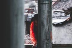 Girl, Hair, Lady Stock Photos