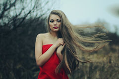 Girl with hair in a long red dress Stock Image