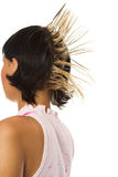 The girl with hairdress Stock Photo