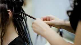 Girl hairdresser weaves dreadlocks client in the salon. Hairdresser braids dreadlocks girl in the salon stock footage