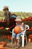 Girl in a halloween pumpkin patch Stock Photos