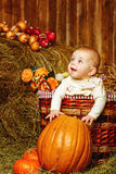 Girl and halloween pumpkins Royalty Free Stock Image