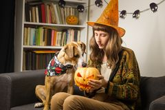 Girl in halloween witch hat sit on the sofa with dog interested in jack`o`lantern royalty free stock photography