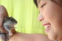 Girl & hamster. Girl smiling happily and playing with her grey pet hamster Royalty Free Stock Images