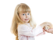 Girl and hamster Stock Images