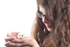 girl with Hamster pet Stock Photography