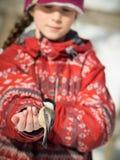 Girl feeding a bird Royalty Free Stock Image
