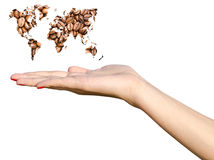 Girl Hand Holding World Map Coffee Beans Royalty Free Stock Image