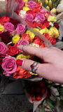 Girl hand takes coloured flowers. The hand of a girl grasps some roses Stock Image