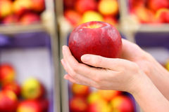 Girl hands hold big red apple in shop Royalty Free Stock Photos