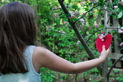 Girl Hanging Heart in Blooming Tree Royalty Free Stock Photography