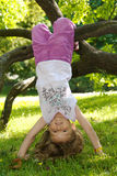 Girl hanging from a tree Royalty Free Stock Photos