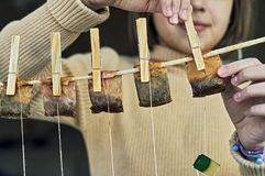 Girl hanging used tea bags for drying. Girl is hanging used tea bags for drying and multiple use on the clothesline with clothes pegs Royalty Free Stock Photo