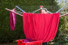 View of a girl working in the backyard. Girl is hanging the washed red sheets up in the garden Royalty Free Stock Photography