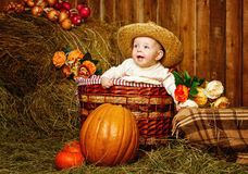 Girl and harvest pumpkins Royalty Free Stock Photo
