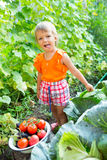 Girl with harvest vegetables. In the garden Stock Photos
