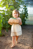 Girl  with harvested cucumber Stock Photo