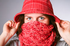 Girl has muffled in a scarf. Royalty Free Stock Photography