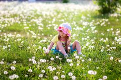 The girl in a hat sits in the field of dandelions. The girl in a hat sits in a grass and breaks a dandelion Stock Photos