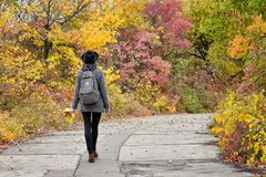 Girl in a hat walking in the autumn park. Bright foliage. Back view.  Stock Photo