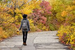 Girl in a hat walking in the autumn park. Bright foliage. Back view.  Stock Images