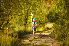 Girl in a hat walks through the birch forest Royalty Free Stock Photography