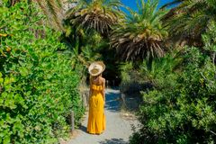 Girl Have Rest In Palm Forest Royalty Free Stock Photography