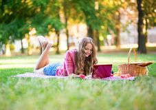 Girl having a picnic and surfing in the net Royalty Free Stock Image