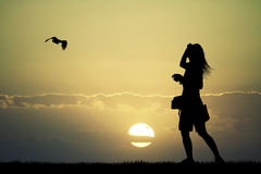 Girl with hawk at sunset Stock Photography