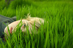 Girl head in the grass Stock Images