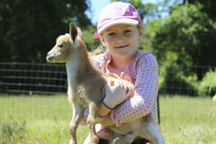 Girl with Her Baby Goat Royalty Free Stock Photography