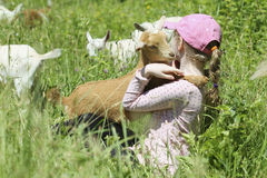 Girl with Her Baby Goats Royalty Free Stock Photos