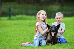 Girl and her brother. Playing with dogs on grass Royalty Free Stock Photos