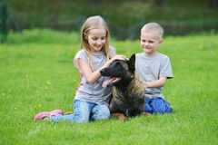 Girl and her brother. Playing with dogs on grass Stock Photo