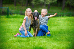 Girl and her brother. Playing with dogs on grass Royalty Free Stock Image
