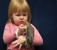 Girl and Her Cockatiel. Little Girl playing with her Pet Cockatiel Stock Photography
