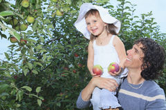 -girl and her daddy with apple background Royalty Free Stock Photo