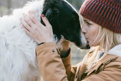 Girl with her dog stock photography