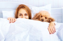 Girl and her dog in the bed Royalty Free Stock Photo