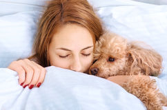 Girl and her dog in the bed Stock Photos
