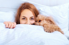 Girl and her dog in the bed Royalty Free Stock Photography