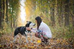 Girl and her  dog Stock Image