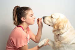 Girl with her dog. By feeding him chocolate Royalty Free Stock Image